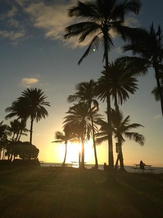 Hawaii Eco Divers & Surf Adventures: final de tarde em Waikki Beach