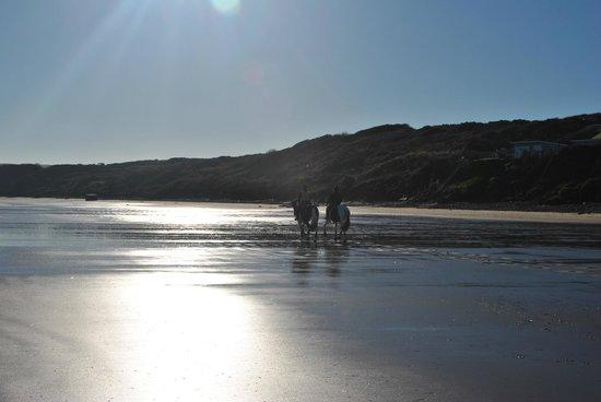 Horses on Filey beach