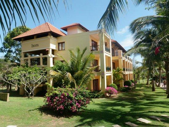 Pandanus Resort: Komplex mit Superiorzimmern
