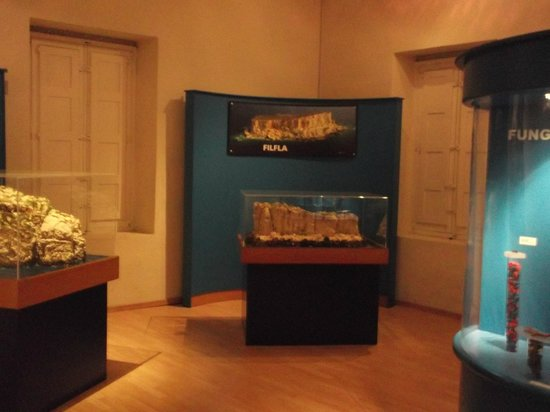 National Museum of Natural History: The maltese islands