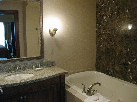 The Osthoff Resort : bathroom
