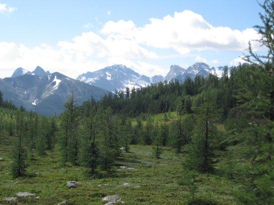 Shadow Lake Lodge: Trail to Gibbon Pass