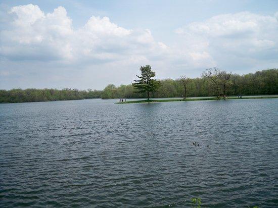 Lake Hendricks