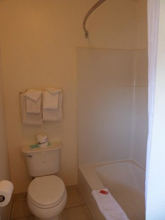 Econo Lodge Bay Breeze: Shower and toilet side of the bathroom.