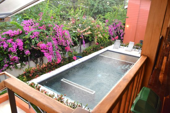 Hotel Samara Inn: Great pool and landscaping
