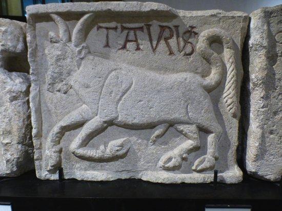 Musée d'Histoire de Lyon : Taureau signe du zodiaque