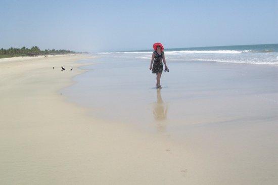 William's Beach Retreat: пляж Кольва. Вид, если смотреть вправо. Хотя... влево такой же вид)))))))))