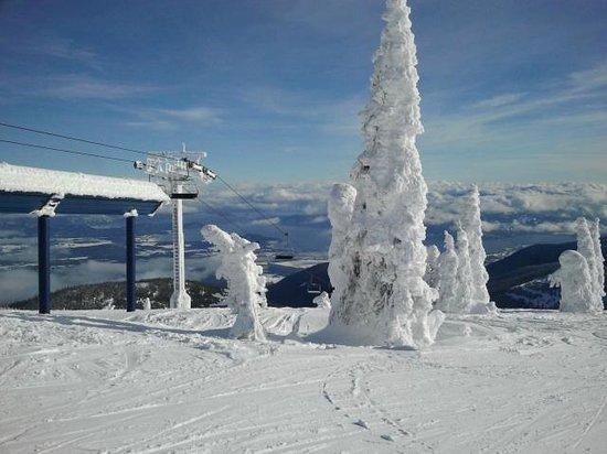 Schweitzer Mountain Resort Lodging : top of the lift