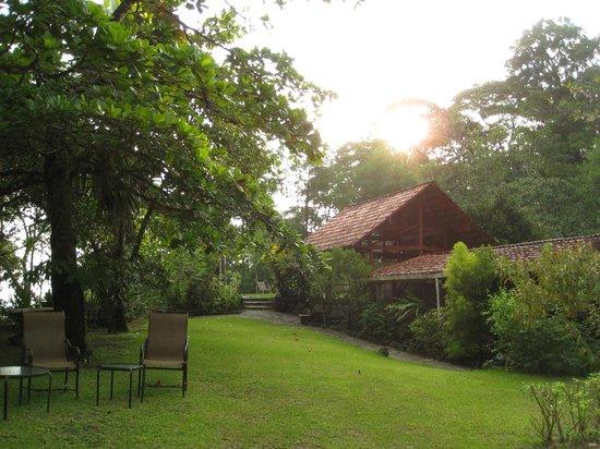 Tiskita Jungle Lodge: the main lodge