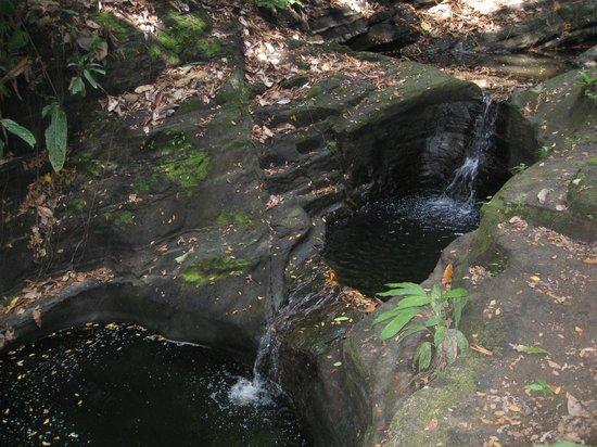 Tiskita Jungle Lodge : River pools- within a 5 min walk