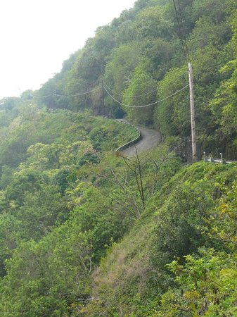 Waipio Na'alapa Trail: The roughly paved switch back road from the Look Out
