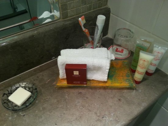 Leonardo Plaza Hotel Tiberias: Vista parcial del baño