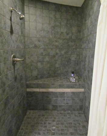 Silo Eco-Home Bed & Breakfast: Nice, big awesome shower