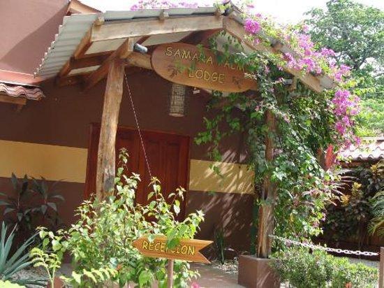 Samara Palm Lodge: out front