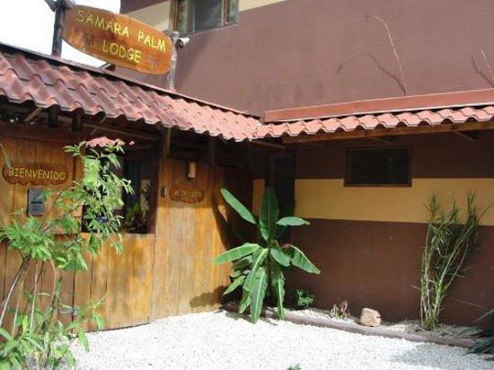 Samara Palm Lodge: reception