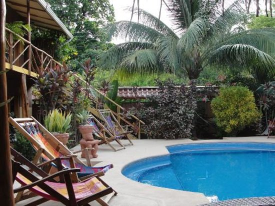 Samara Palm Lodge: the pool area is really relaxing