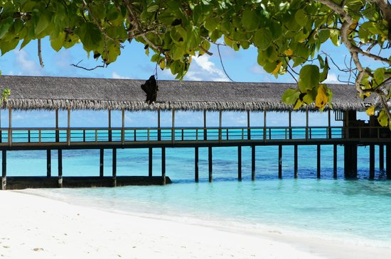 Reethi Beach Resort: Over water restaurant/bar
