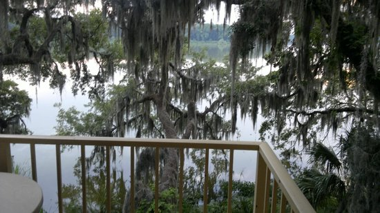 Wyndham Garden Gainesville : View from the Balcony of the Lake