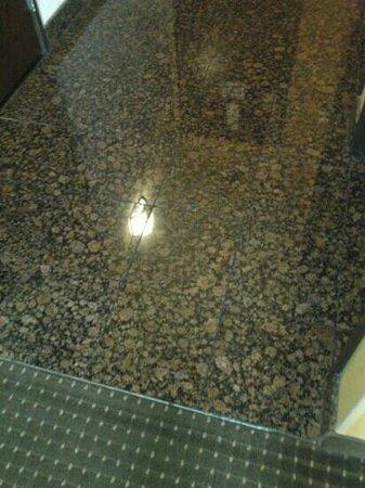 Drury Inn & Suites San Antonio Near La Cantera Parkway : nice floors