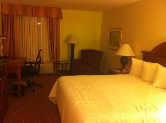 Hilton Garden Inn New Orleans Airport: king room
