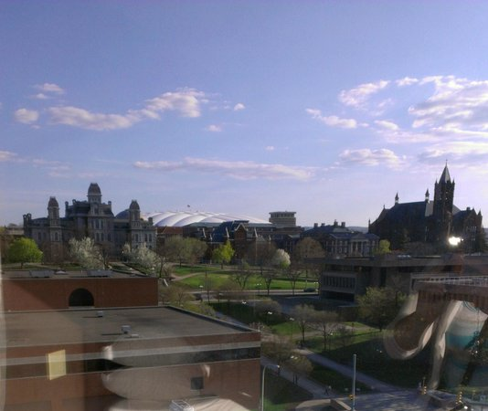 Sheraton Syracuse University Hotel & Conference Center: Just love the campus view