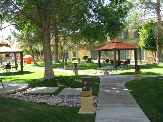Best Western Plus Tucson Int'l Airport Hotel & Suites: grassy area