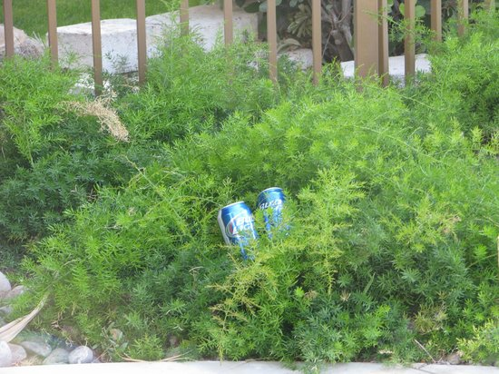 BEST WESTERN PLUS Tucson Int'l Airport Hotel & Suites: close up of cans that never got picked up