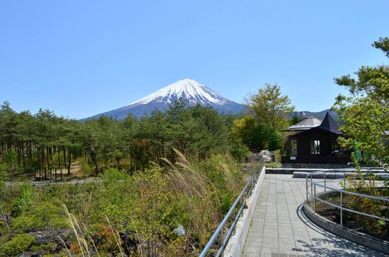 Narusawa Mt. Fuji Museum : なるさわ富士山博物館まえから
