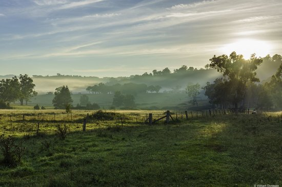 Dag Sheep Station: Morning mist