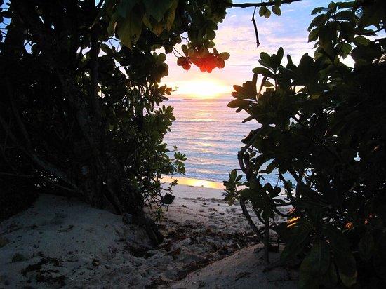 Chalets d'Anse Forbans: lever du soleil à 15 mètres du chalet