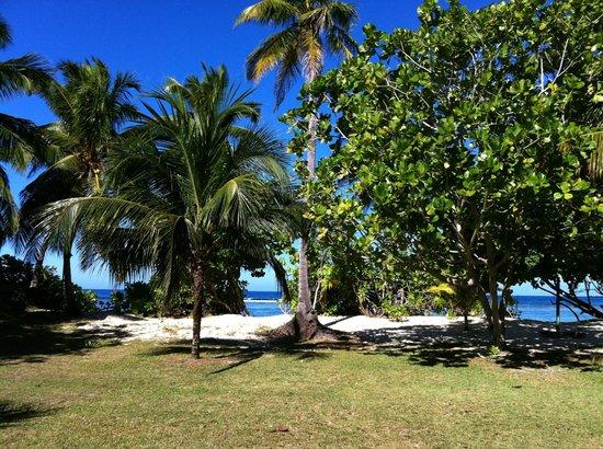 Chalets d'Anse Forbans: vue depuis la terrasse de notre chalet n°2