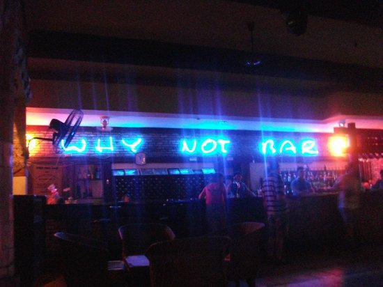 Why Not Bar - Restaurant : Why Not Bar