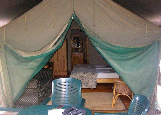 Golden Leopard Resort - Manyane: Safari tent