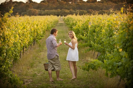 Beachside Prevelly Villas: Visit world class wineries on a wine tour