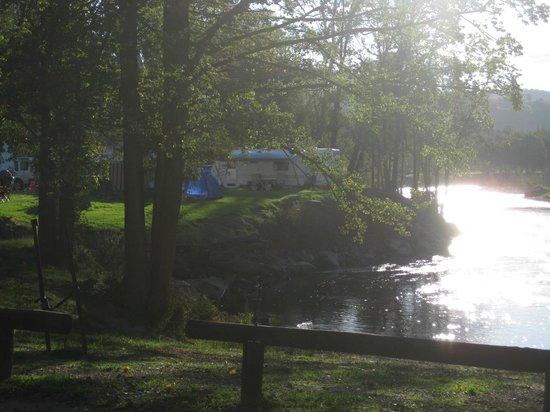 Riverglade Caravan Park : Mist starting to settle