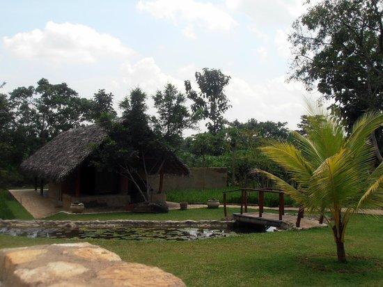 Kalu's Hideaway: jardin