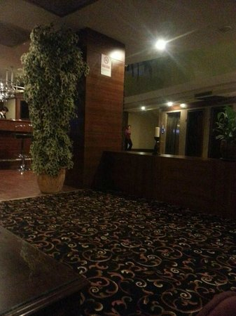 Elite Hotel Kucukyali: lobi