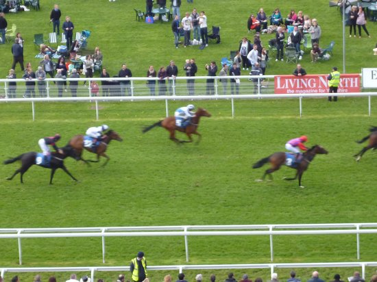 York Racecourse: the winning post a great place for your horse to reach first !