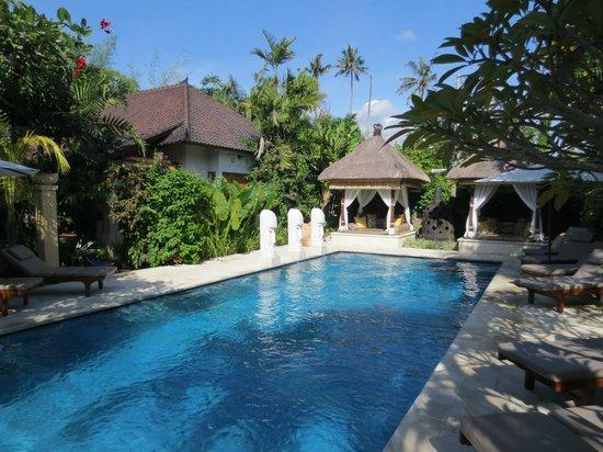 Villa Tanjung Mas: Zwembad bij Tanjung Mas