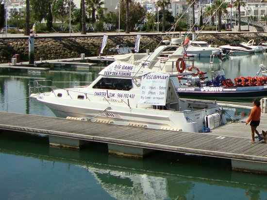 Bom Dia Boats: Pescamar boat