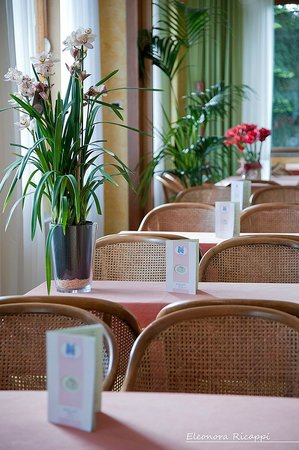 Hotel Alpi: Bar
