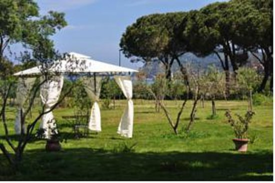 hotel tirrena le d 39 elbe portoferraio italie voir les tarifs et avis h tel tripadvisor. Black Bedroom Furniture Sets. Home Design Ideas