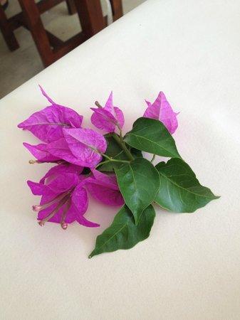 Amphora Hotel: masa üzerinde eksik olmayan çiçeğimiz