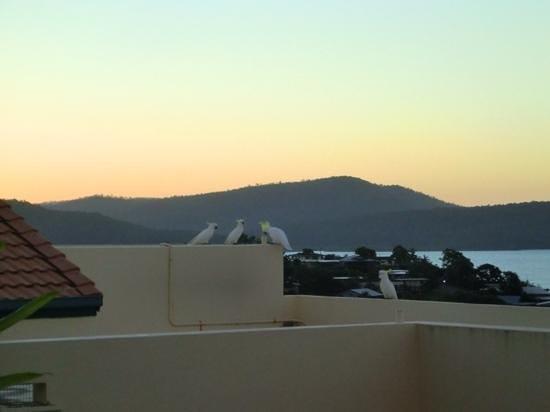 Mediterranean Resorts: noisy neighbours ;-)
