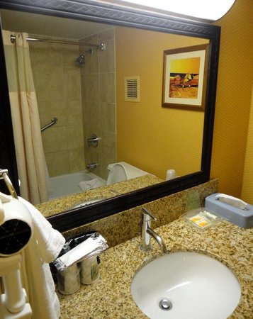 Holiday Inn Houston Intercontinental Airport: Bathroom