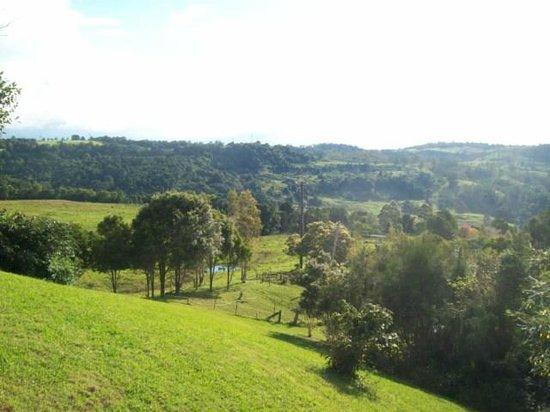 Rosebrook Cottages : View 1 from cabin 1