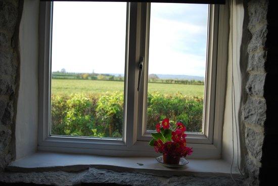 Havyatt Cottage B&B: view from the living room