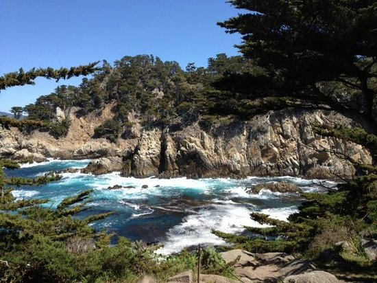 La Playa Carmel Raw Beauty At Point Lobos