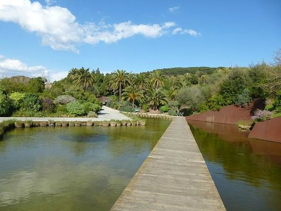 Guide to barcelona outdoors travel guide on tripadvisor for Jardin botanico montjuic