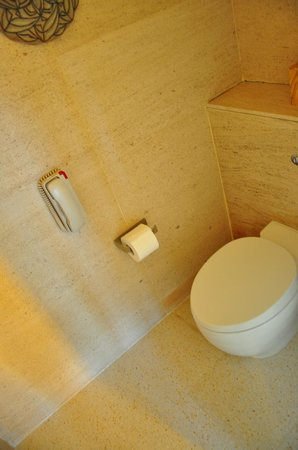 ไฮแอตรีเจนซี่ดานังรีสอร์ทแอนด์สปา: second seperate toilet